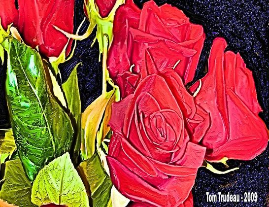 Red Roses - Oil Painting by Tommi Trudeau.